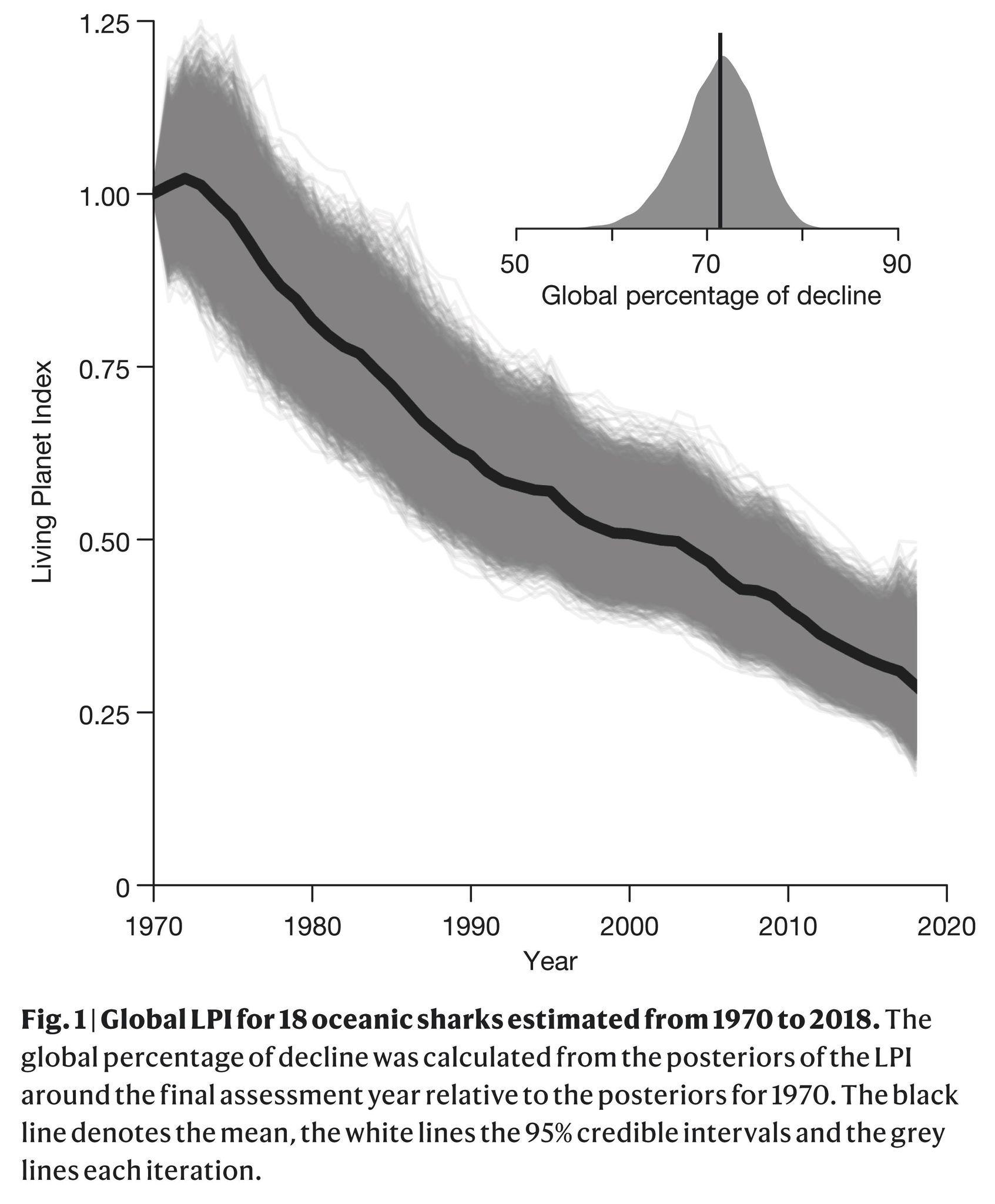 全球表層鯊魚及魟資源自1970年起的下降量評估